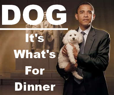 inglewoodreports-obama-ate-dog
